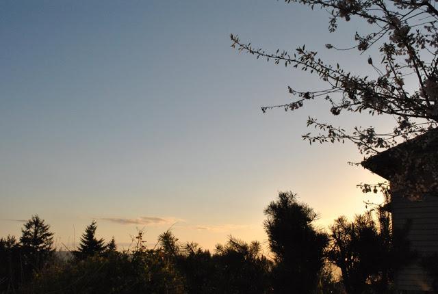Sunrise 4-2011 (46)